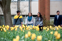 Admissions Viewbook Outdoor Campus
