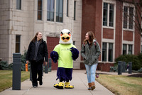 Tuffy - Campus Wellness Program